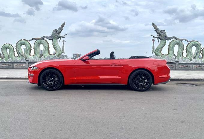 Ford Mustang Convertible 2019 full