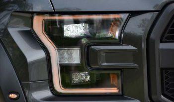 Ford F150 Raptor 2019 full